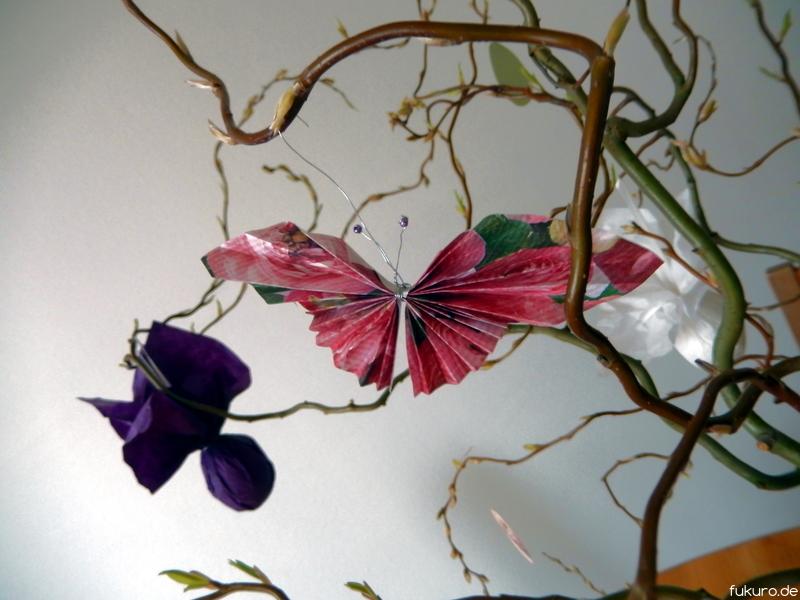 Schmetterlinf als Frühlingsbote